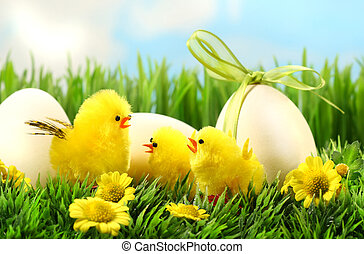 Little yellow easter chicks in the tall grass