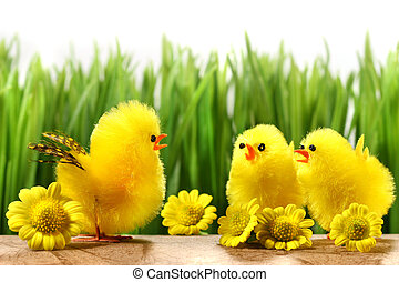 Yellow chicks hiding in the grass with flowers