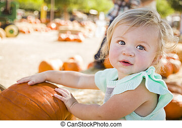 Adorable Baby Girl Having Fun at the Pumpkin Patch
