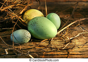 Eggs in the barn - Easter eggs laying on barn wood in the...