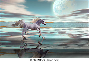 DESTINY - A white Arabian stallion gallops across the...