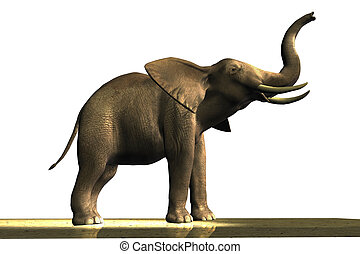 ELEPHANT - Male African elephant with ivory tusks.