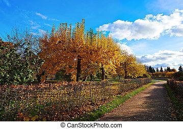 City Park Peterhof. Golden Autumn. Russia