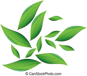 Tea leaves Vector illustration