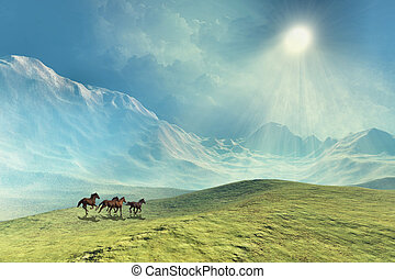 TOUCHING THE CLOUDS - A herd of wild horses run under...