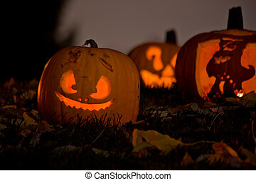 Jack-O-Lanterns in the Grass With Autumn Leaves