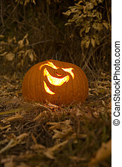 Laughing Jack-O-Lantern in the Grass With Fallen Leaves