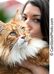 Maine Coon Cat Owner - Woman kisses her cherished purebred...