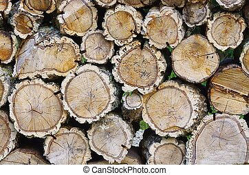 stack of wood from cork oak