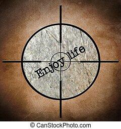 Enjoy life target