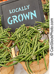 Farmers Market - Bushel baskets full of locally grown green...