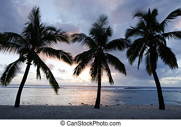 Titikaveka beach in Rarotonga Cook Islands - Silhouette of a...