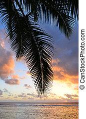 Titikaveka beach in Rarotonga Cook Islands - Silhouette of a...
