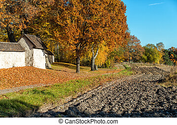 Autumn in Scandinavia - Swedish countryside in Risinge,...