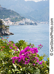 Flowers in the Amalfi Coast, Italy - Panoramic view of the...