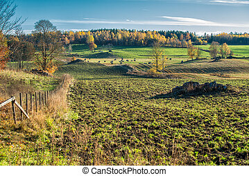 Autumn in Sweden - Swedish countryside in Ostergotland...