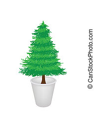 Illustration of Pine Tree in A Flower Pot