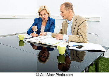 Environmentalists Discussing Over Documents In Office - Male...