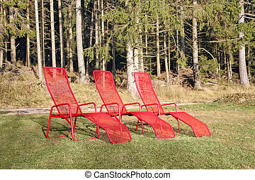 Three red chairs for sunbathing in the forest recreation...