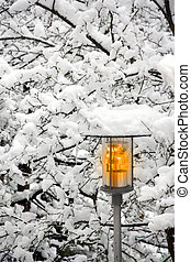 Street lamp in a winter snowy day - Street lamp with trees...