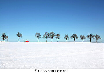 tree line with a passing red car - Snow landscape - tree...