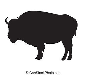 Bison - Vector illustration of bison