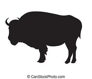 Bison - Vector illustration of bison