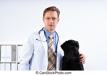 portrait of a veterinarian near labrador dog