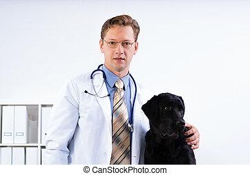 portrait of a veterinarian near labrador dog