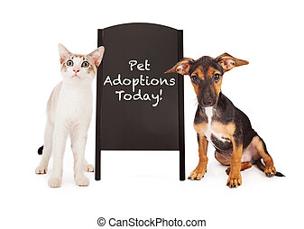 Dog and Cat With Pet Adoption Sign - A young puppy and a...