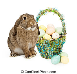 Easter Bunny With Basket of Eggs - A bunny sitting next to...