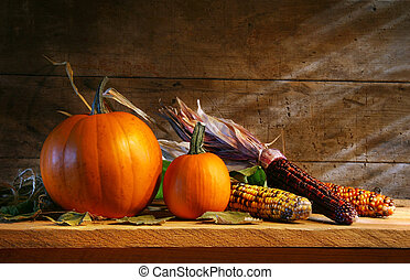 Pumpkins in the shed on a shelf with pumpkins and corn
