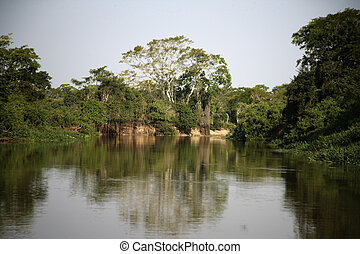 Pantanal - water in the Pantanal wetlands of Brazil