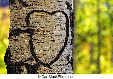 Aspen Tree Heart - Hand carved heart in Aspen in fall