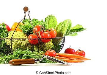 verano, vegetales, jardín, pala