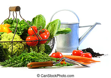 Fresh vegetables with watering can and black earth