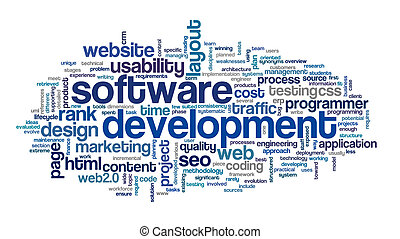 Software development concept in tag cloud on white...