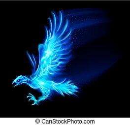 Fire hawk. - Illustration of blue fire hawk on black...