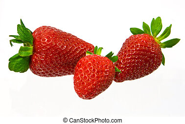 strawberry isolated - Several large and red sweet...