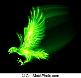 Fire hawk - Illustration of green fire hawk on black...