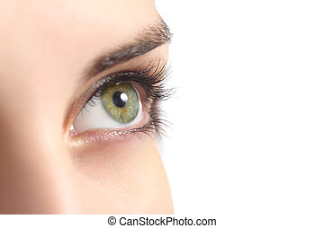 Close up of a green woman eye isolated on a white background...
