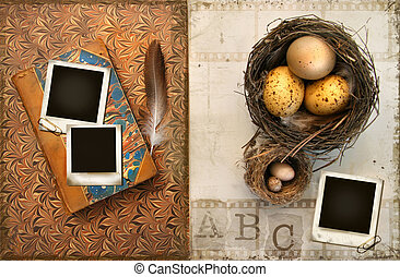 Old books with bird nests on grunge background