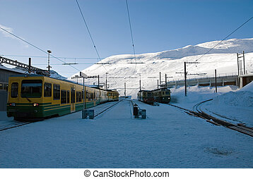 Mountain Trains - Trains parked at Kleine Scheidegg,...