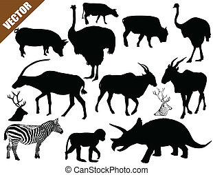 Set of animals collection on white background, vector...
