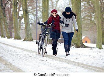 Fashionable Ladies Walking in a Cold Park