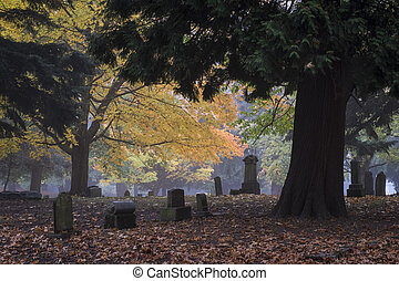 Old Pioneer Cemetery in fog - Bright yellow tree with fall...