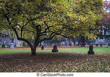 Old Pioneer Cemetery in fog - Old Pioneer Cemetery and...