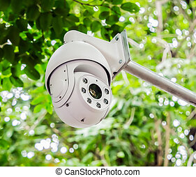 CCTV security camera on green trees at the back