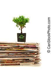 Plant on top of pile of newspapers - Small plant on top of a...
