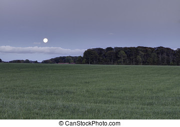Moonrise over the fields. Copy space.